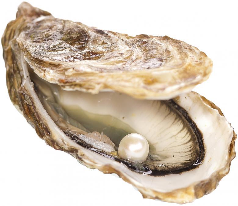 Perlen  Startseite - Bild   www.miyabi-perlen.com